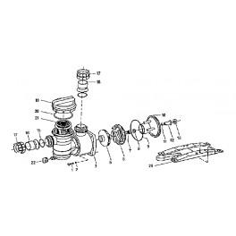 Rondelle vis corps de pompe