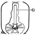 Diffuseur inférieur et tube central S0164T/S0166T  pour Filtre à sable TOP Hayward